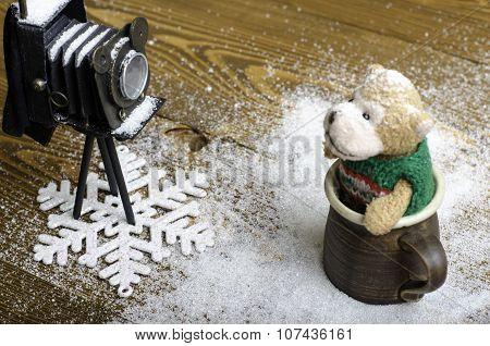Ld Camera And Bear Toy.