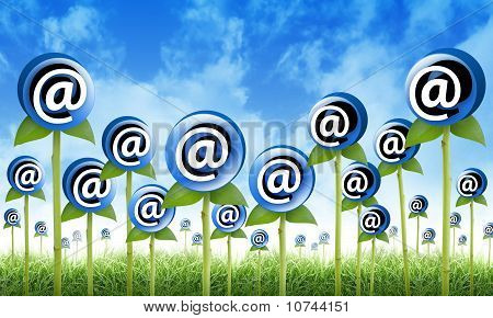 Email Internet Inbox Flowers Sprouting