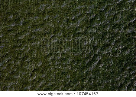 Abstract  background  with natural texture  and  irregular pattern