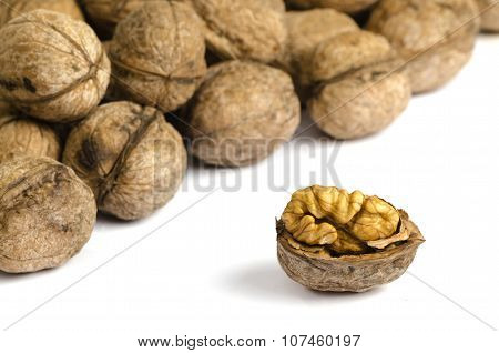 Walnuts On White Background With Shadow