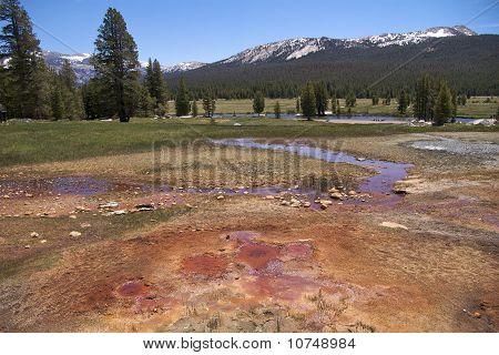 Soda Springs colours, Yosemite