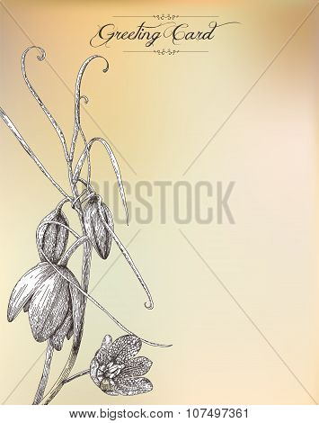 Vintage Greeting Card With Flower.