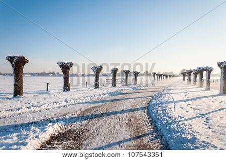 Curved Country Road In Wintertime