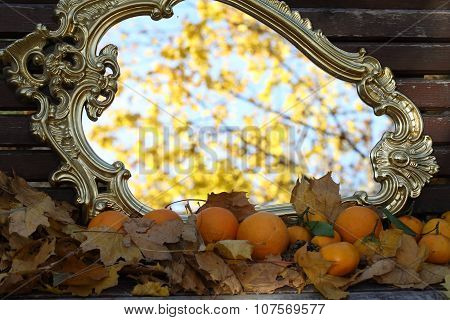 Reflexion In A Mirror Of Autumn Leaves On Branches Of A Maple And Tangerines