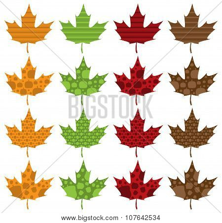 Pattern Filled Maple Leaves