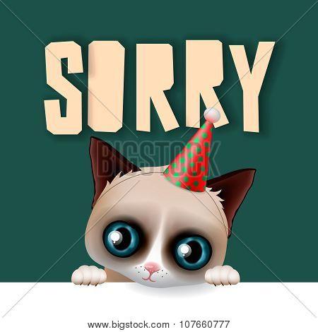 Cute cat apologize sorry card