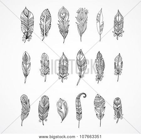Hand drawn bohemian, tribal, ethnic set of feathers