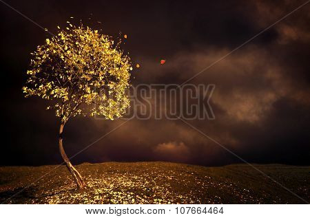 Lonely autumn tree with dark cloud sky.