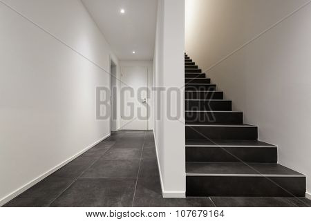 Architecture, modern entryway, interior with black stair case
