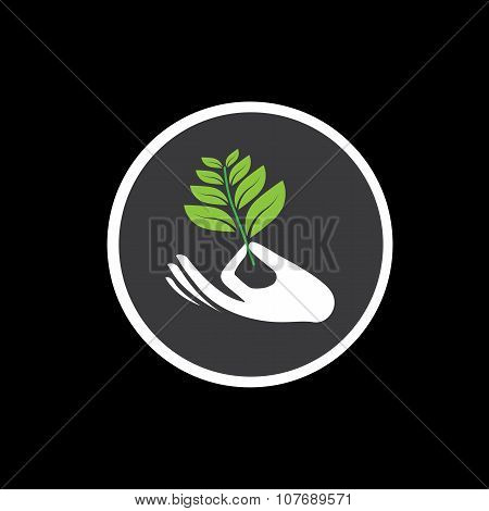 Sprout In A Hand Sign - Concept Vector Icon On Black