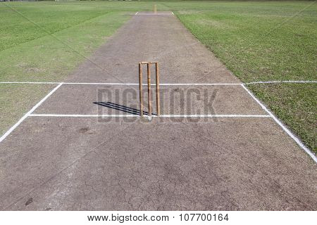 Cricket Pitch Grounds