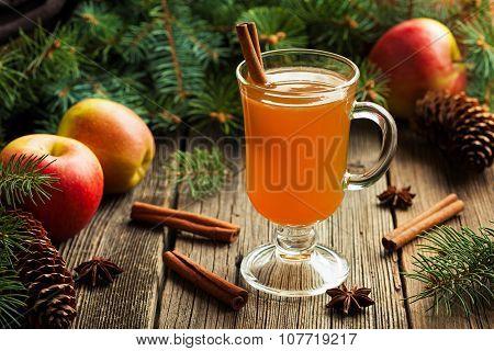 Hot apple cider traditional winter season drink with cinnamon and anise. Homemade healthy organic wa