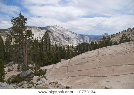 Checkerboard rock, Olmsted Point, Yosemite