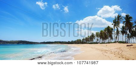 Exotic Beach With Palms And Golden Sands In Dominican Republic, Punta Cana, Macao