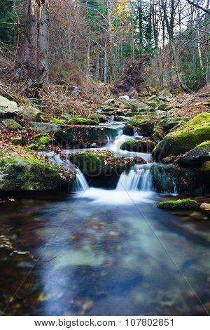 Creek Ponikly