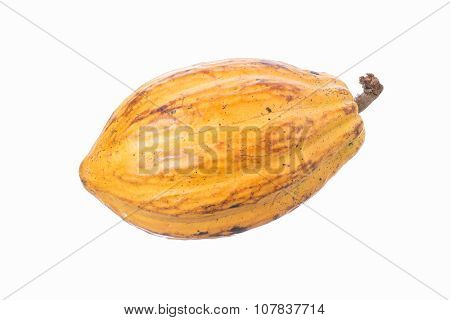 Cacao Pod Isolated On White
