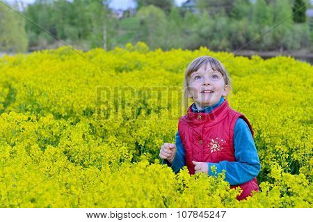 Cute Smile  Little Girl On The Yellow Flower Meadow In Spring Day