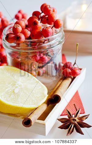 Sorbus Aucuparia / Red Rowan Berries With Lemon