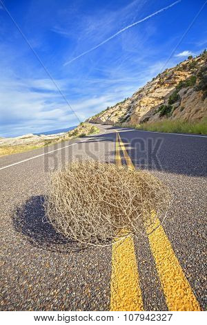 Tumbleweed On An Empty Road, Travel Concept Picture.