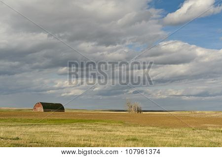 Scenic View Of Wheat Field And Barn