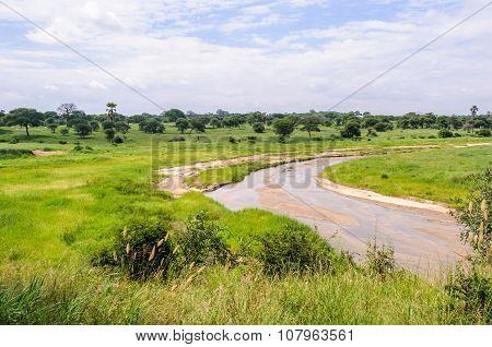 The River Giving The Name To The Tarangire Park, Tanzania