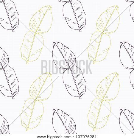 Hand drawn kaffir lime branch wirh flowers stylized black and green seamless pattern