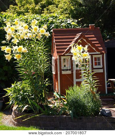 Garden Playhouse Cottage with large yellow Lily's nestled within the surrounding landscape.