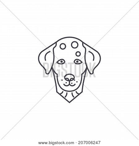 dalmatian, dog vector line icon, sign, illustration on white background, editable strokes