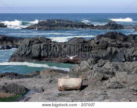 Felsige Küste Oregons
