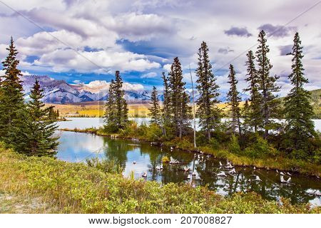 The valley along the Pocahontas road. Shallow-water lakes, overgrown with yellowed grass and picturesque firs. Concept of active and ecological tourism