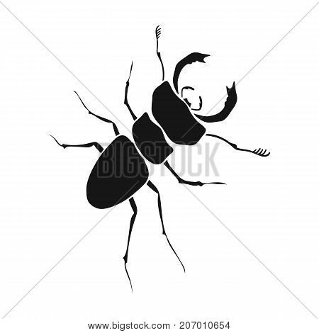 Beetle, arthropodous insect. A beetle with claws single icon in black style vector symbol stock isometric illustration .
