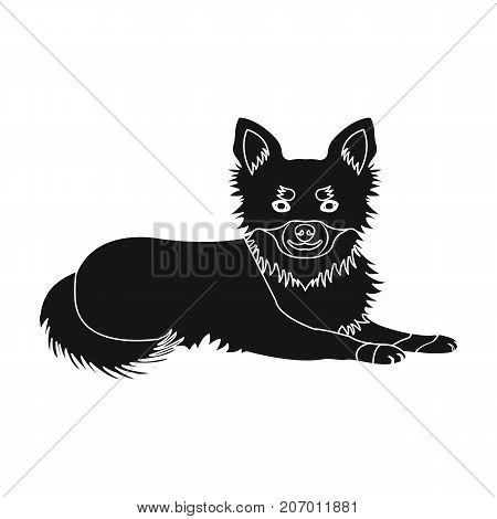 A pet, a lying dog. Pet, dog care single icon in black style vector symbol stock illustration .