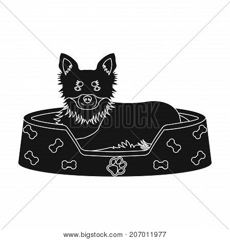 Lounger for a pet, a sleeping place. Dog, care of a pet single icon in black style vector symbol stock illustration .