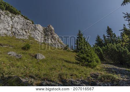 Stones and rock near Velky Choc hill in north Slovakia