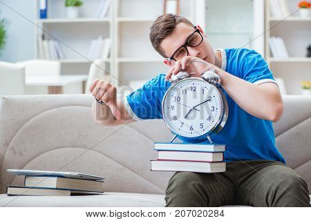 Young student preparing for exams studying at home on a sofa