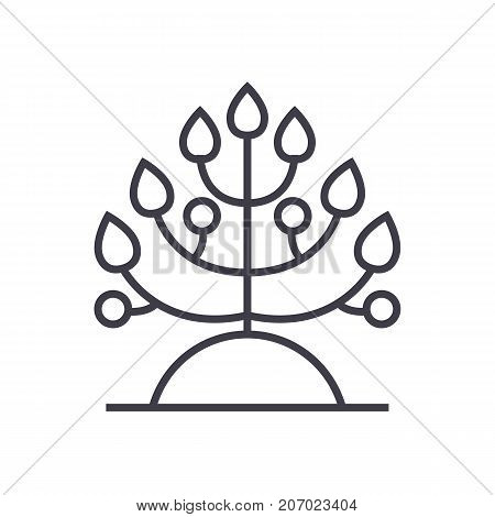 plant, biology vector line icon, sign, illustration on white background, editable strokes