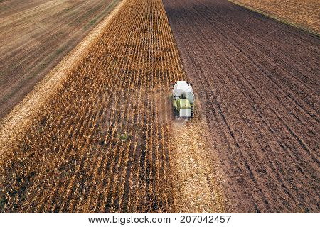 Corn maize harvest aerial view of combine harvester working on ripe maize crop field from drone pov