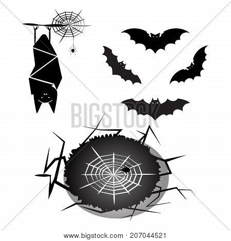 Created halloween bat and spider stock vector