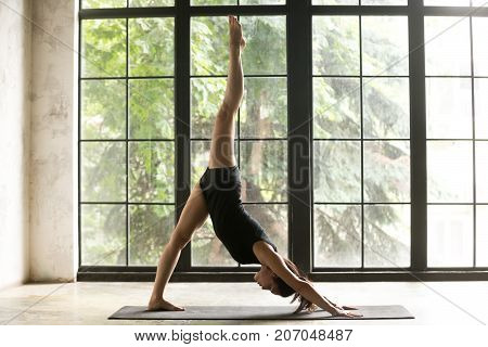 Young woman practicing yoga, standing in one legged downward facing dog exercise, eka pada adho mukha svanasana pose, working out, wearing sportswear, black shorts and top, indoor full length, studio