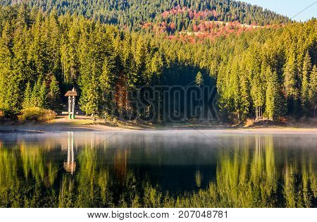 Forest Reflection On Foggy Surface Of Synevyr Lake