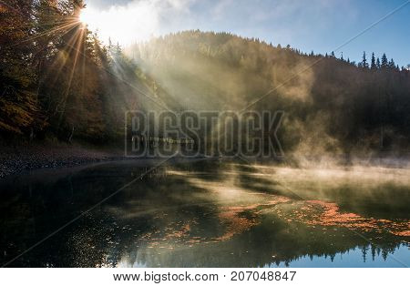 Sun Light In Fog Over The Mountain Lake Synevyr