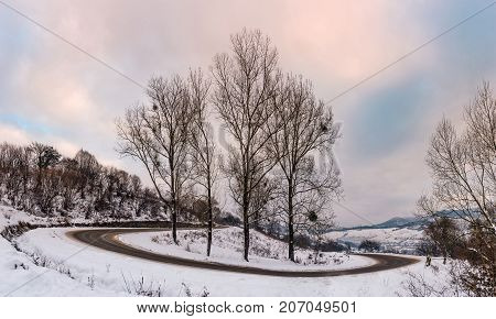 trees on serpentine on winter morning. lovely winter landscape with snow covered hills and cloudy sky