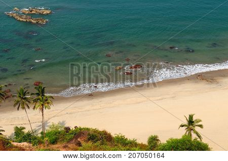 Sand tropical beach with coconut trees and traditional boat - Arambol beach Goa India