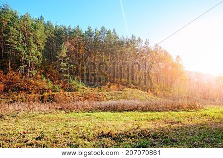 Landscape With Blue Sky And Autumn Wood With Trees And Brush Upon Grassland Hill.