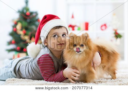 Child and dog enjoying in cuddling in Christmas time