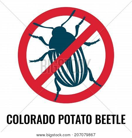 Colorado potato beetle anti emblem with bug, harmful for your plants in garden, places in red circle on vector illustration isolated on white