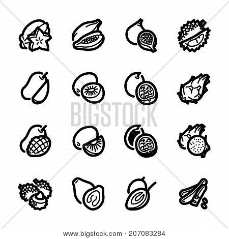 Exotic fruits icons. Exotic fruits vector illustration. Fruits and seasoning in line style. Vegetarian food signs. Professional vector icons for fruits and spices.