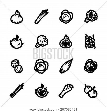 Vegetables icons. Vegetables vector illustration. Vegetables and seasoning in line style. Vegetarian food signs. Professional vector icons for vegetables and spices.