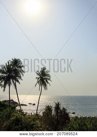 Palm Trees Silhouette At Sunset on the sea