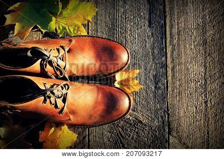 Brown shoes on fall background. Top view .